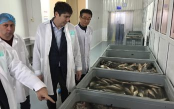 Мәжіліс депутаты Ерлан Барлыбаев Қапшағай балық өңдеу зауытының жұмысымен танысты