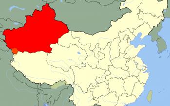 «Шығыс Түркістан» деп аталатын қазақтың жері қалай Шинжиаң өлкесі болды – тарихшы