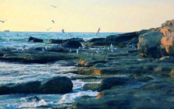 Каспий теңiзiнiң құқықтық статусы туралы құжат қабылданбақ