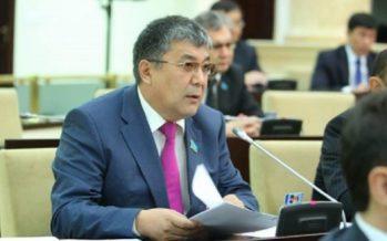 Сенатор: Түркістан облысы мен Түркістан қаласын дамыту туралы заң қабылдануы – өте маңызды