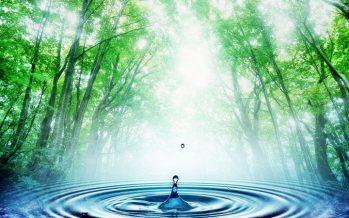 Феномен новой воды: в Караганде в подвале забил родник